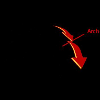 Body Arch
